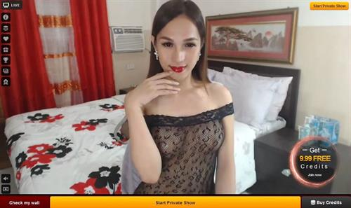 A sexy shemale model in a stunning HD cam room on LiveJasmin.com