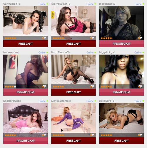 The homepage featuring available models for tranny video chat on Shemales.com